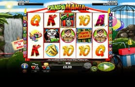 Pandamania Slot Bonus