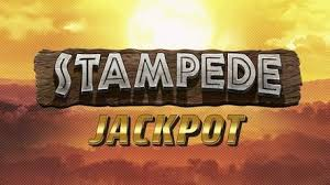 Stampede Jackpot Review