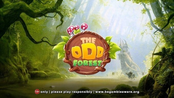 The Odd Forest Review