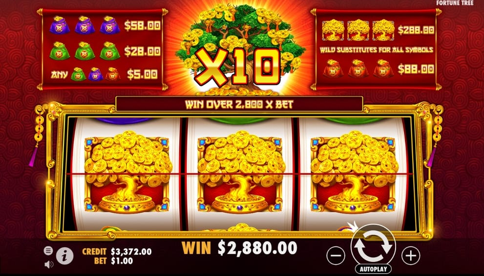 tree of riches daisy slots gameplay