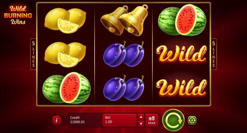 Wild Burning Wins - 5 Lines Gameplay